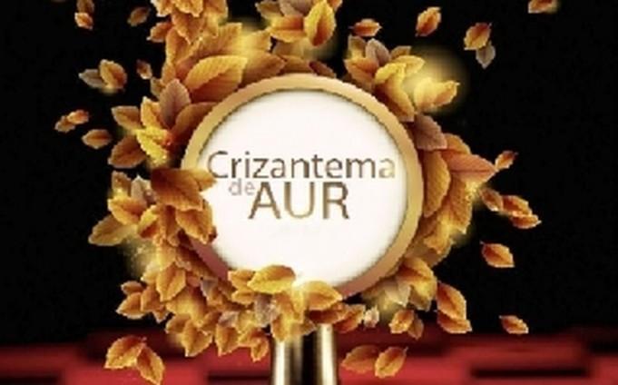 crizantema-de-aur-targoviste-2015_medium.1000 (romaniacultural.ro)