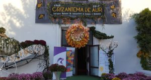Foto Teatru Tony Bulandra - Crizantema de Aur 2017 (foto by Bogdan Dragomir)
