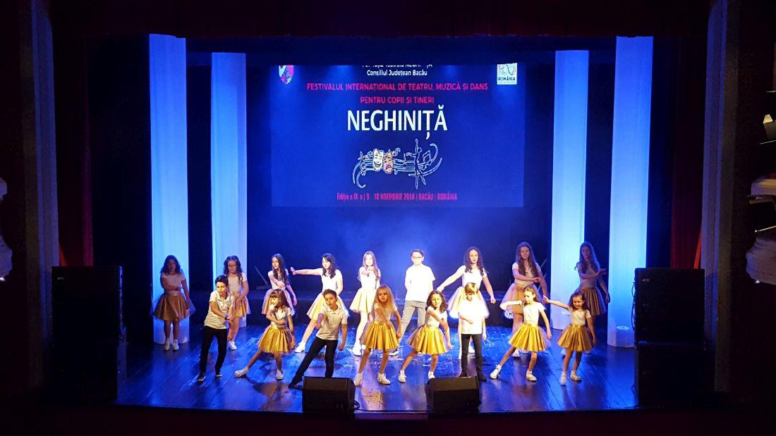 20181109_120638 Festiv. Neghinita 2018.1100 (foto by Bogdan Dragomir)